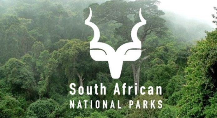 Datacentrix boosts SANParks' digital transformation with the power of SD-WAN