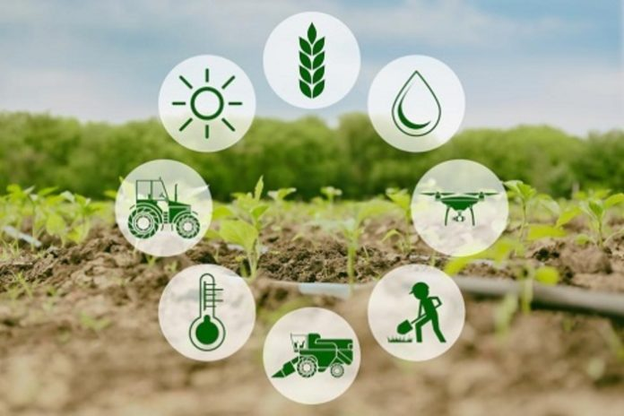 Agri-Tech start-up Releaf secures $4.2 million to boost food processing in Nigeria